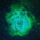Rosetta Nebula Narrowband without SII,                                Caspar Schumann