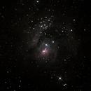 M8- Lagoon Nebula,                                Cody Garges