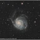 M101,                                Wulf