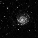 M101,                                Alfred Au