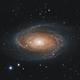 Bode's Galaxy,                                drivingcat