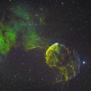 Jellyfish Nebula,                                Wyvern
