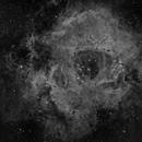 NGC2237 - Rossete Nebula,                                Marios Tsalkidis