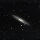 NGC253,                                Ed Kuzemchak