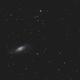 M106 and neighbors,                                OrionRider