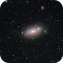M63 - a deep look into the Sunflower Galaxy,                                Thomas Klemmer