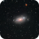 M63 - a deep look into the Sunflower Galaxy,                                Thomas Klemmer