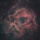 NGC 2244 - Rosette Nebula,                                Tristan Campbell