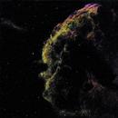 IC 443  Jellyfish Nebula (Nébuleuse de la Méduse),                                Roger Bertuli