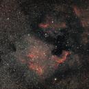 North America Nebula - NGC 7000,                                  Max Gillet