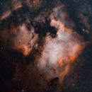 NGC 7000 BICOLOR,                                Alberto Maria Casati