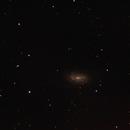 NGC 2903,                                Geert Vanden Broeck