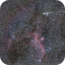 21P comet and seagull,                                  Yihsiu Juan