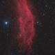 NGC 1499,                                Bernd Steiner