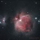 M42, Orion Nebula,                                Jens Zippel