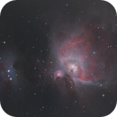 Messier 42 and 43 Great Orion Nebula and Running Man,                                Laurie Allai