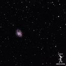 M1 Crab Nebula,                                Adam Bailey