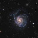 M101 - Pinwheel Galaxy,                                  Robert Eder
