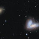 Siamese Twins/Butterfly Galaxies,                                  sydney