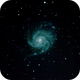 M101/Pinwheel Galaxy,                                JoeMomXD