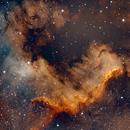 North America Nebula,                                gorgipark