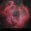 Caldwell 49 - Rosette Nebula LHaRGB,                                Frank Schmitz