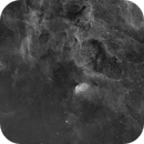 SH2-101 Tulip nebula with sourroundings,                                Erik Guneriussen