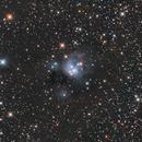 NGC 7129,                                Giosi Amante