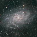 M33,                                Andrew Barton