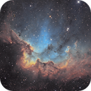 The Wizard  - NGC 7380,                                Kevin Morefield