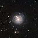 NGC 3344,                                AstronoSeb