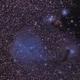IC2169,                                KojiTajima