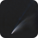 Comet C/2020 F3 NEOWISE in the morning nautical twilight 11.07.2020 - magnitude 1.7,                                Andrea Storani