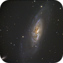 M106,                                Gianni Cerrato