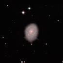 NGC 4689 LRGB Color Corrected,                                jerryyyyy