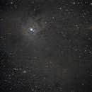 NGC7023,                                Jammie Thouin