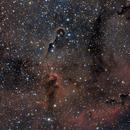 The Elephant Trunk Nebula IC 1396,                                Alessandro Speranza