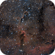 The Elephant Trunk Nebula IC 1396,                                Alessandro Speranza