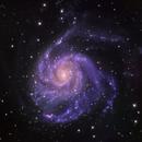 M 101 - Pinwheel Galaxy,                                Satwant Kumar