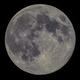 Full Moon April 7th 2020,                                Andrew Harrell
