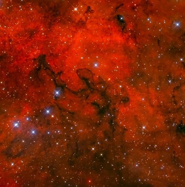 Barnard 344 potrait,                                Christoph Lichtblau