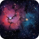M20 - Trifid Nebula,                                Paul Ricker