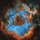 NGC 2244 - Rosette Nebula SHO,                                Daniel and Iana Egan