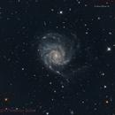 M101,                                Federico Bossi