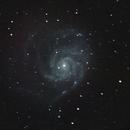 M101,                                Alex