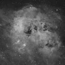IC 410 - Tadpoles Nebula [Ha],                                jdifool