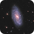NGC 3953 and Abell 1387 in Ursa Major,                                Jim Thommes