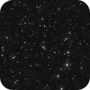 Abell 262 with NGC 708 group widefield,                                Riedl Rudolf