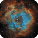 Rosette Nebula in SHO,                                Ethan Murray-Leung