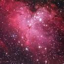 M16, Eagle Nebula,                                Daniele Gasparri